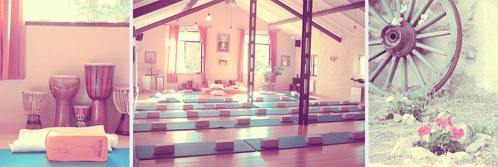 bio_yoga